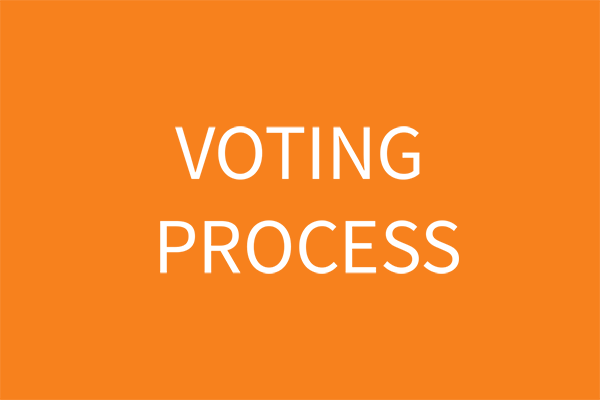 voting-process